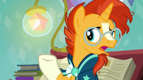 "Sunburst ""I don't see how anything on that list"" S6E2"