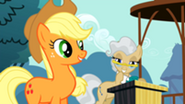 201px-Applejack Mayor 2 S2E14