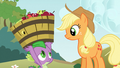 "Applejack ""it's not necessary"" S03E09.png"