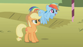 Applejack looking at an excited Rainbow Dash S01E13.png