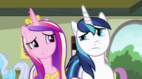 Cadance and Shining Armor looking confused S7E3