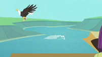 Eagle snatching fish with map S4E09