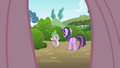 Fluttershy's point of view looking at Twilight and Spike S1E1.png