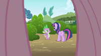 Fluttershy's point of view looking at Twilight and Spike S1E1