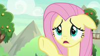 "Fluttershy ""be careful"" S8E23"
