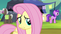 "Fluttershy ""if that is what you really want..."" S4E22.png"