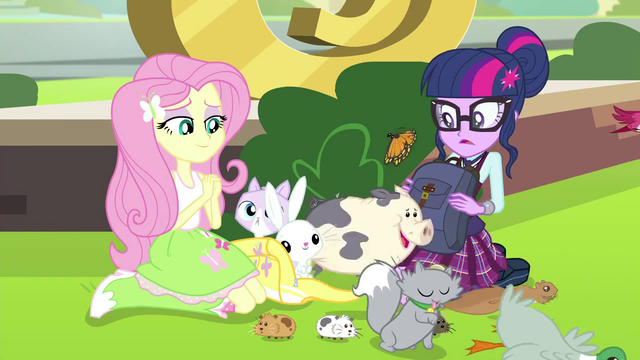 File:Fluttershy has a lot of animals EG3b.png