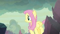 Fluttershy searching a remote area S9E9