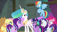Ponies gather around Twilight and Celestia S8E7