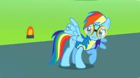 Rainbow Dash's injured wing S3E7