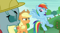 Rainbow Dash -last one to the stream- S8E9