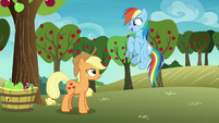 "Rainbow Dash happy ""awesome!"" S8E5"