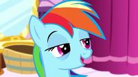 Rainbow Dash looking half-asleep S5E13