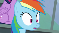 Rainbow Dash looking impressed S8E20