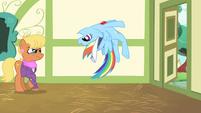 Rainbow Dash stops herself S4E05