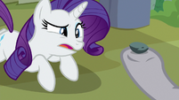 Rarity looking perplexed at Boulder S8E4