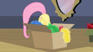 S02E11 Fluttershy schowana w pudełku