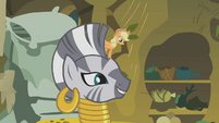 "Zecora explains ""this plant just wants a laugh"" S1E09"