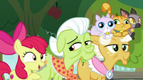 "Apple Bloom ""if he left this many tracks"" S9E10"