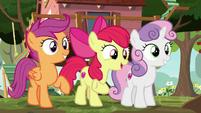 Apple Bloom -we're the Cutie Mark Crusaders- S8E12