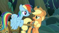Applejack -somethin' sure ain't right- S8E13