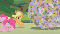 Applejack watches Pinkie gallop away S1E10.png