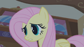 "Fluttershy ""animals care for themselves"" S1E09.png"