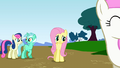 "Fluttershy ""this is an emergency"" S1E7.png"