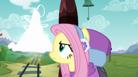 Fluttershy watching the volcano disappear S6E17