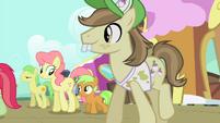 Ponies walking S4E13