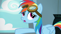 Rainbow Dash --anypony can put them on-- S6E7