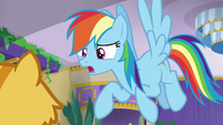 Rainbow Dash -sleeping the whole time- S8E5