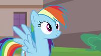 Rainbow Dash Pondering 2 S2E16