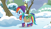 Rainbow Dash arrives with Tank S5E5