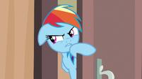 Rainbow asks if Quibble counts as suspicious S6E13