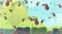Seeds spreading around S4E07