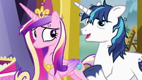 "Shining Armor ""he has a pop-up art show"" S7E3"