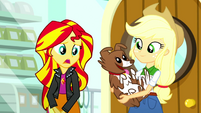 "Sunset Shimmer ""I don't have a pet"" SS7"