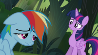Twilight and Rainbow -an honest mistake- S4E04