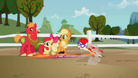 Twist and Truffle follow Scootaloo S2EP12
