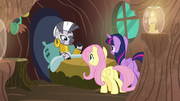 Zecora thanking Fluttershy S7E20