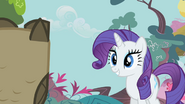 640px-Rarity looks at Owlowiscious S1E24