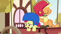 """Apple Bloom """"we're clearly gonna lose it"""" S6E14.png"""