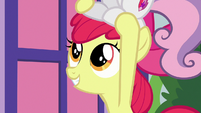 Apple Bloom with wide, excited eyes S8E12