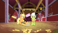 Applejack looking at Granny Smith in worry S3E8.png