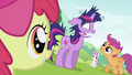 CMC looking at Twilight Sparkle S2E03.png
