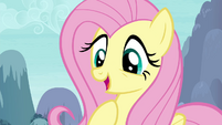"""Fluttershy """"you speak my language too"""" S4E16.png"""
