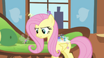 Fluttershy arguing with Seabreeze S4E16