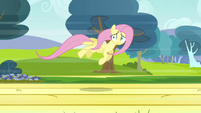 Fluttershy flying 3 S2E22