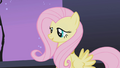 Fluttershy pointing out similarity between Rarity's necklace and cutie mark S1E02.png